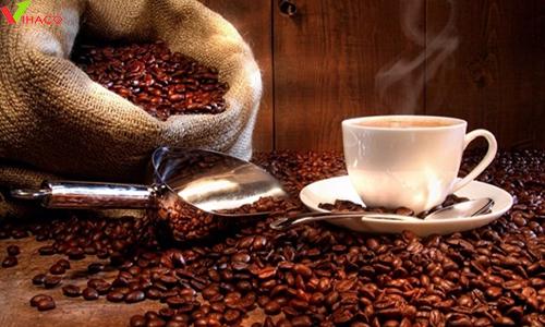 Khát vọng đưa thương hiệu cà phê Việt ra thế giới