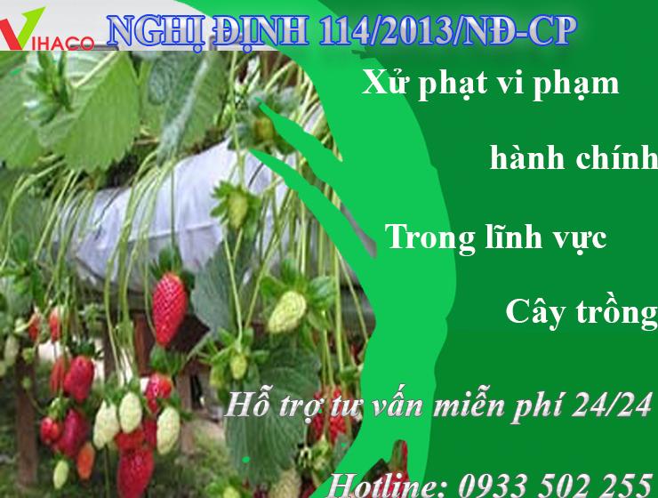 nghi-dinh-114-2013-nd-cp-ngay-03-thang-10-nam-2013